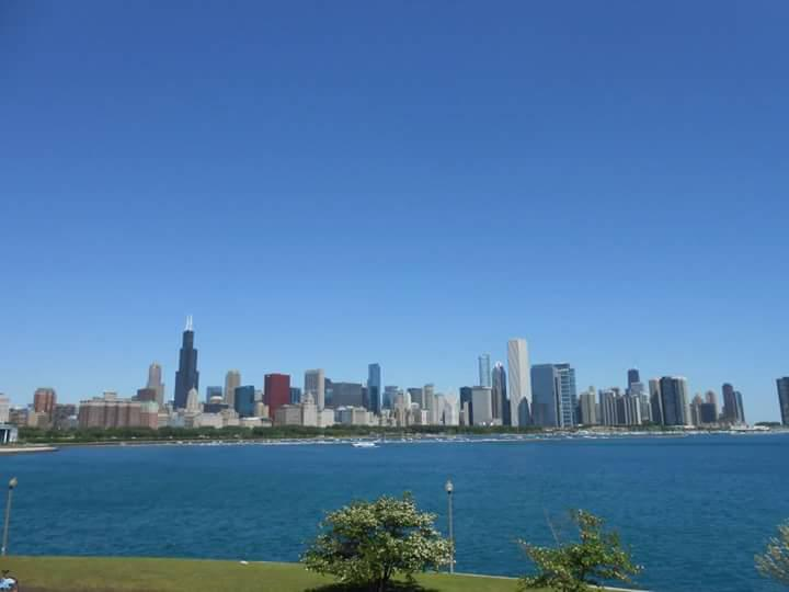 chicago, museum, garden