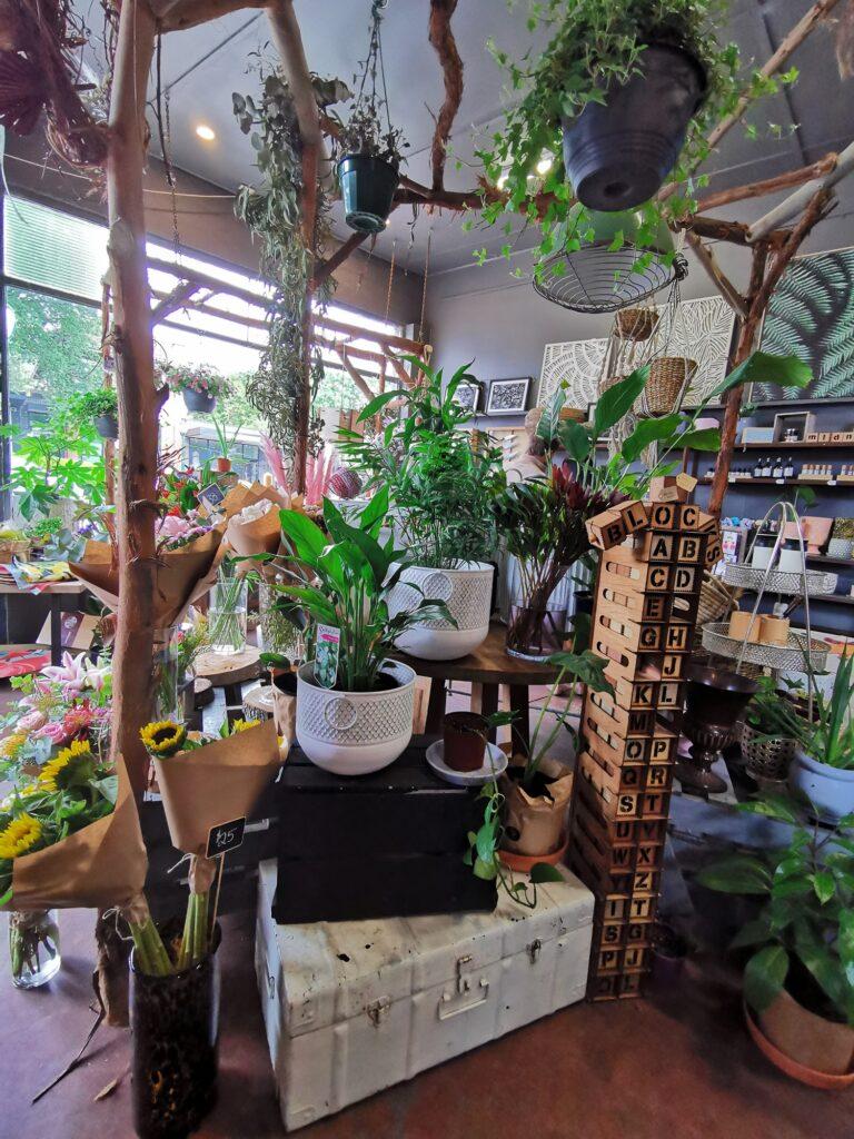florist healesville victoria plants